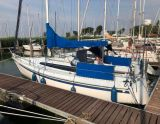 Gib Sea 31, Segelyacht Gib Sea 31 Zu verkaufen durch Jachthaven Noordschans