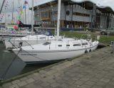 Catalina 30, Sejl Yacht Catalina 30 til salg af  Jachthaven Noordschans