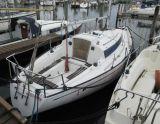 Standfast Loper, Парусная яхта Standfast Loper для продажи Jachthaven Noordschans